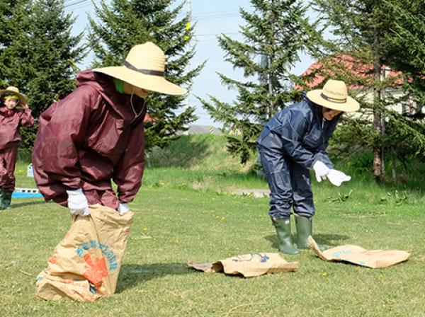 第3種目「農業障害物競争」