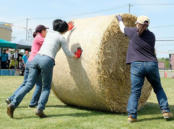 第4種目「麦稈ロール転がしリレー」